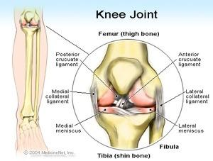 Knee Joint Risk BJJ
